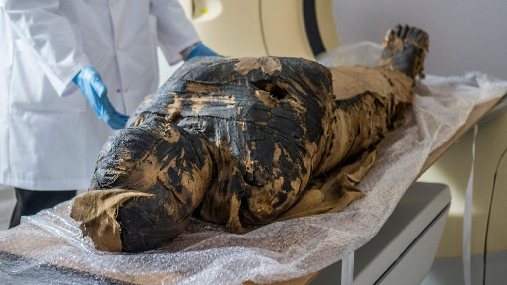 Pregnant Egyptian mummy: Polish researchers find an embryo in the belly of a mummy - evidence