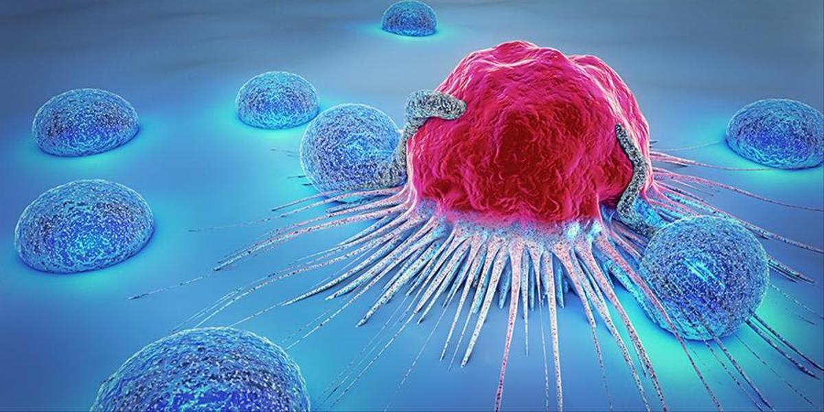 Monitor killer cells