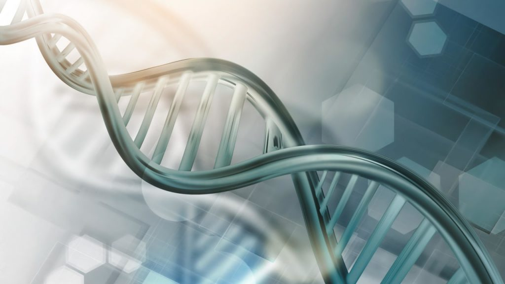 The entire human genome decoded for the first time: What's next?  - Adviser