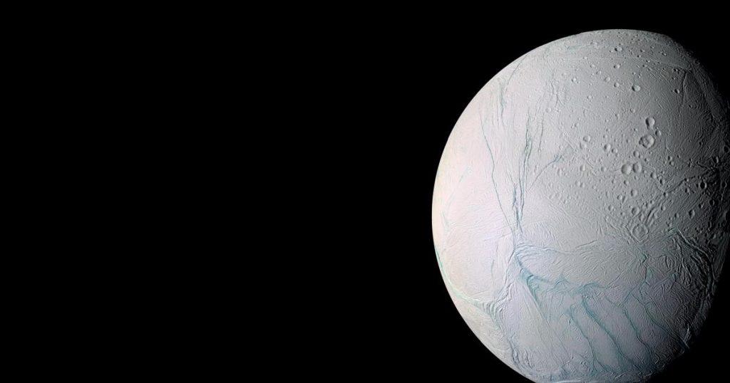 Life on Saturn's Moon Enceladus: New Evidence