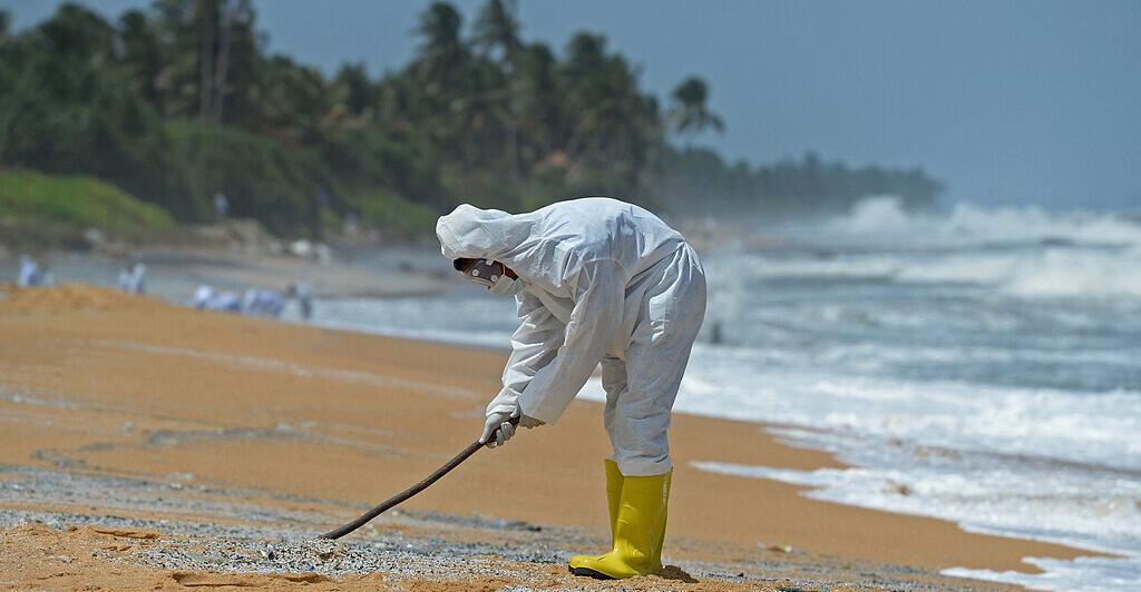 Hundreds of dead fish and turtles on the dream beaches of Sri Lanka