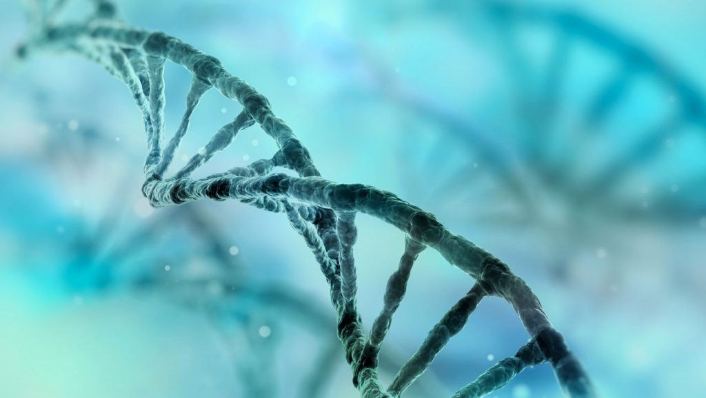 Researchers want to decode the entire human genome for the first time