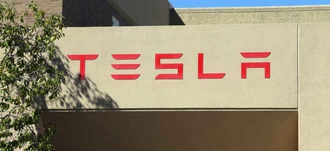 Tesla implementation initiative: Environmental law undermined - participation is stronger |  04/06/21