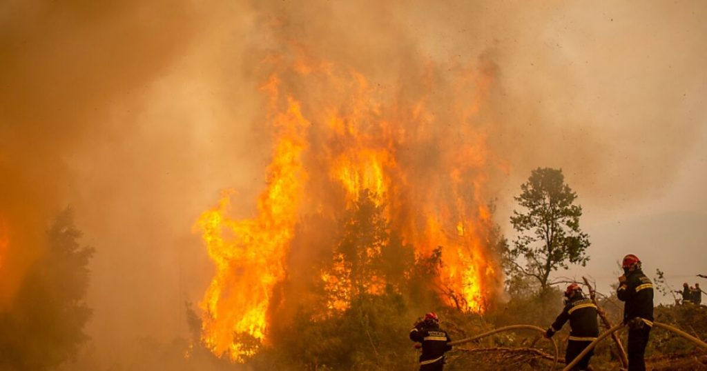 90 thousand hectares have been burned in Greece so far