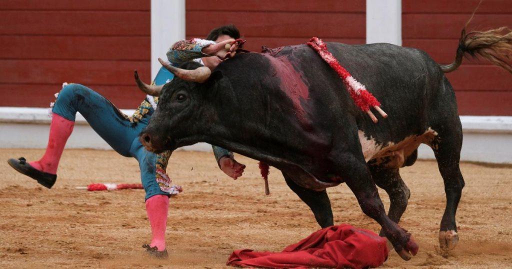 Feminist deals fatal blow to bullfighting in Gujion