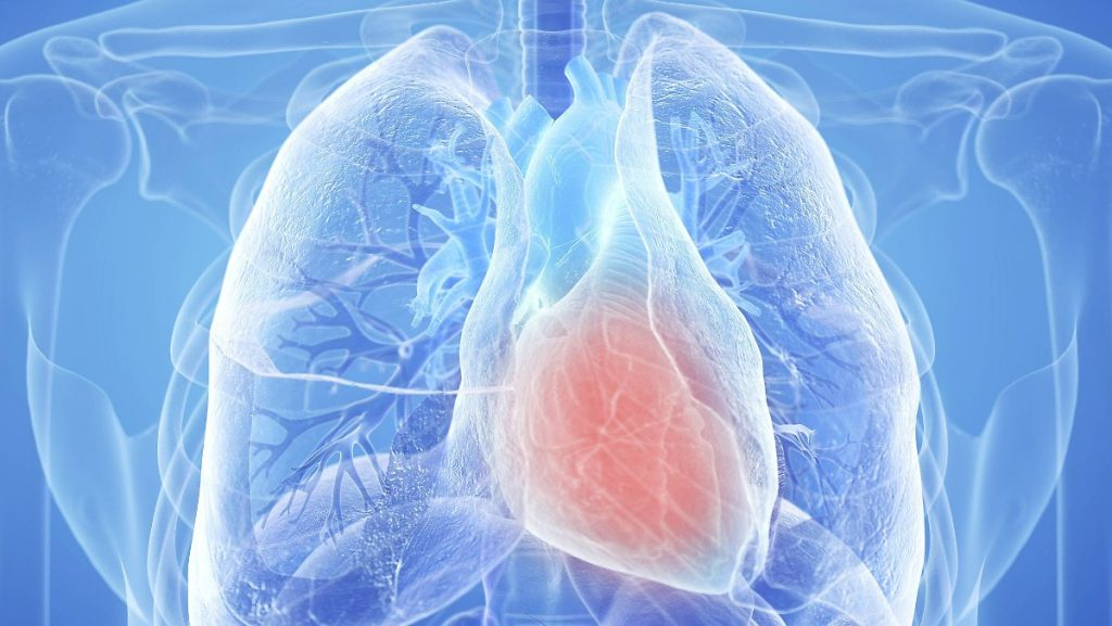 Myocarditis and pericarditis: Heart problems after vaccination particularly affect men