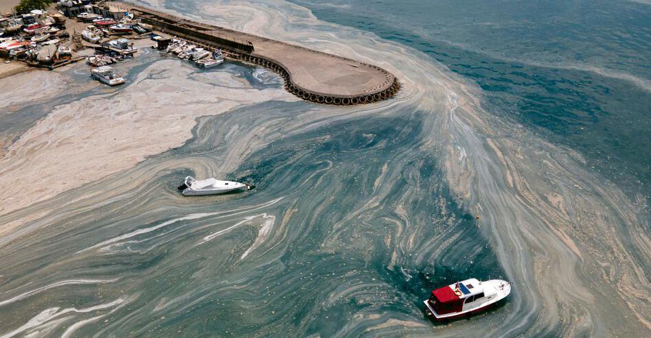"""Turkey's Sea Mud Expert: Marmara Sea """"Now Dead Sea"""""""