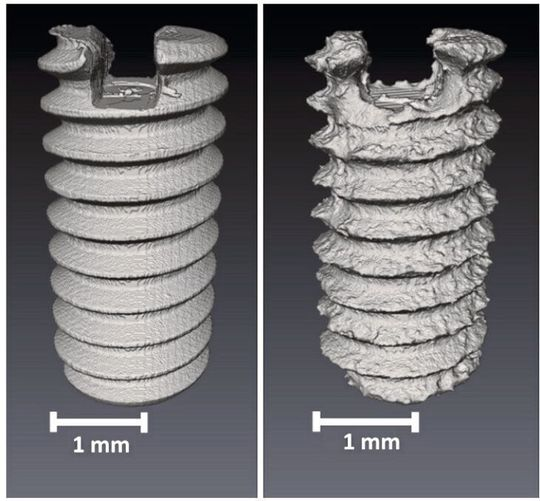 On the left you can see the screw before trying to take it apart.  On the right in the photo, the same screw after 56 days in the lab without decomposition products.  The deterioration due to corrosion can be clearly seen here.  The surface has changed.
