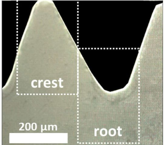The tips and depths of the Mg-5Gd screw can be seen here through a special microscope image.