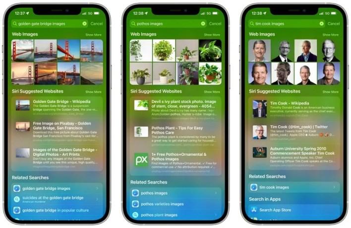 Apple iOS 15 Spotlight Image Search